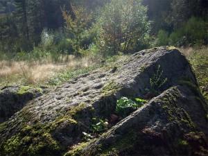 pierre-a-cupules
